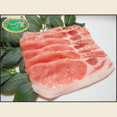 画像2: 【特売】◆生姜焼き用◆真狩村産 ハーブ豚ロース肉 300g