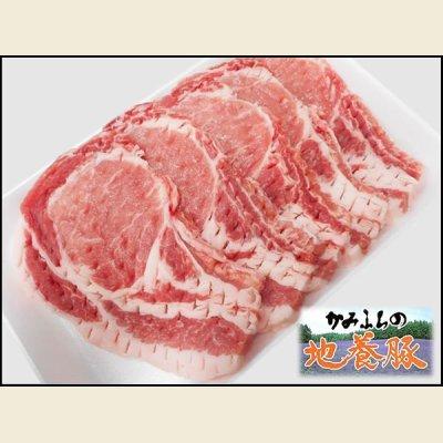 画像1: 北海道上富良野町産 かみふらの地養豚 ロース カツ用 600g(1枚120g×5枚)